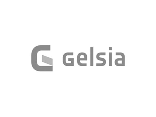 logo_gelsia